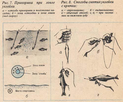 прикормка для щуки зимой своими руками