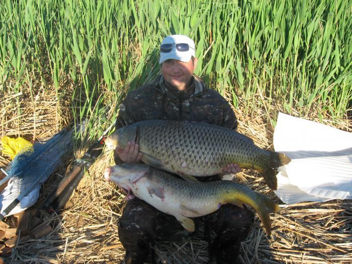 на что ловят рыбу на каспии
