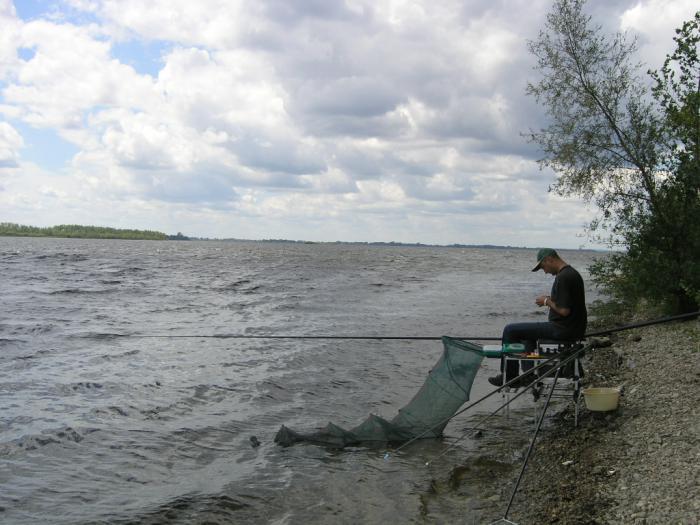 эхолоты для рыбалки на волге