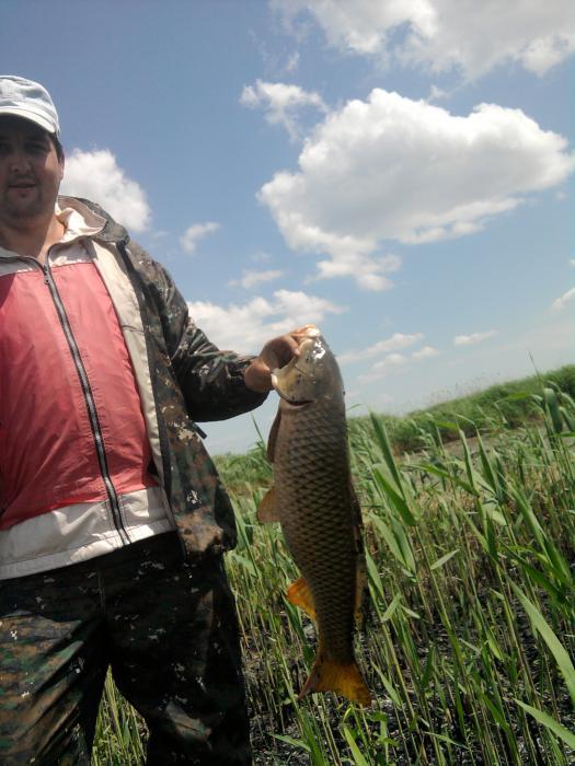 рыбалка на разливах калауса видео